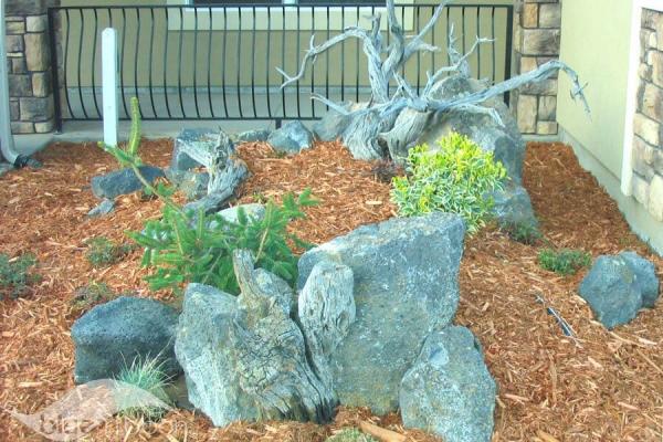 landscaping-128BB4B479-5626-89F2-B64A-4A4E011D8FE9.jpg